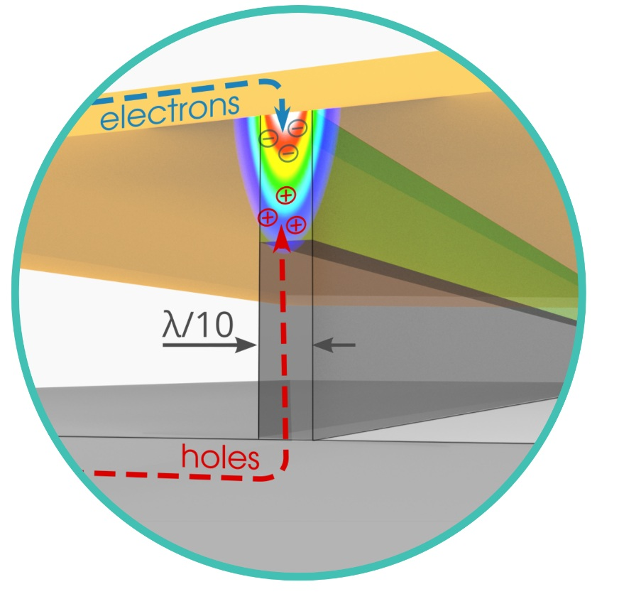 Surface Plasmon Polariton Amplification upon Electrical Injection.jpg